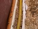 beckerbau-bagger-rhein-main-138